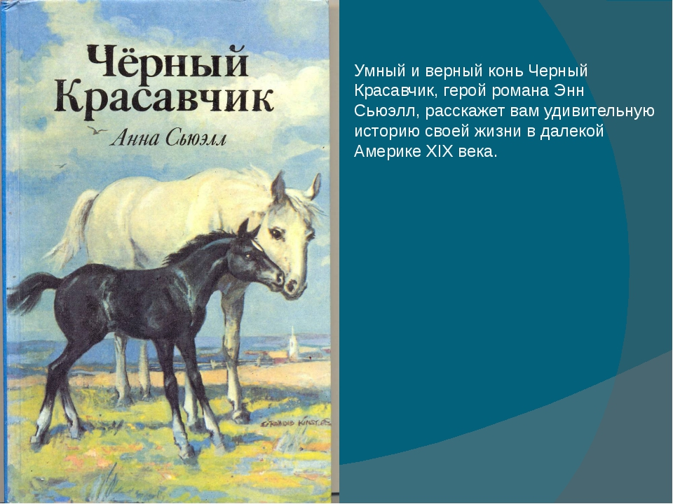 Умный и верный конь Черный Красавчик, герой романа Энн Сьюэлл, расскажет вам...