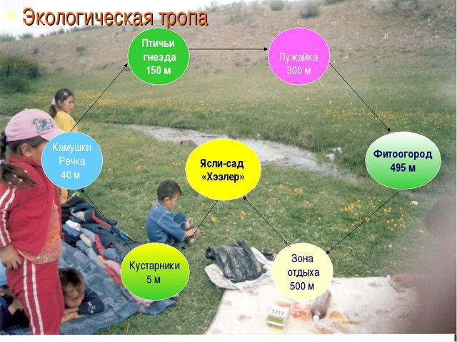 Экологическая тропа Ясли-сад «Хээлер» Камушки Речка 40 м Кустарники 5 м Зона...
