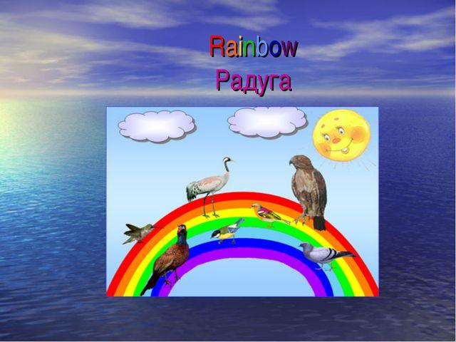 Rainbow Радуга
