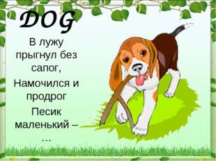 DOG В лужу прыгнул без сапог, Намочился и продрог Песик маленький – …