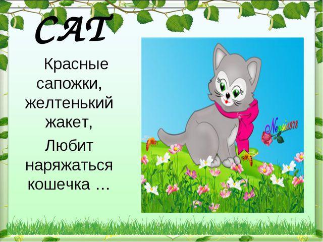 CAT  Красные сапожки, желтенький жакет, Любит наряжаться кошечка …