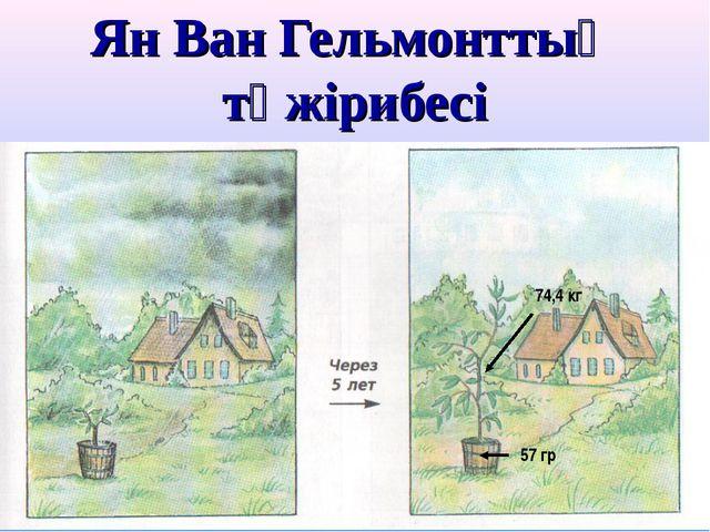 Ян Ван Гельмонттың тәжірибесі 74,4 кг 57 гр