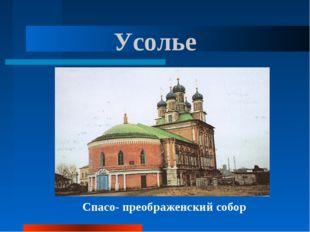 Усолье Спасо- преображенский собор