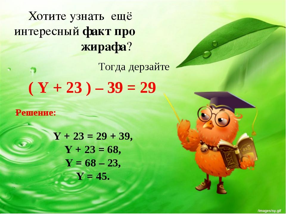 Хотите узнать ещё интересный факт про жирафа? ( Y + 23 ) – 39 = 29 Тогда дер...