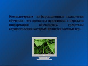 Компьютерные информационные технологии обучения - это процессы подготовки и п