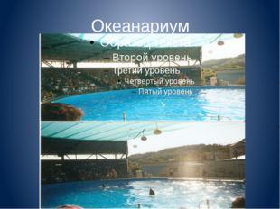 Океанариум Здесь также есть аквапарк, парк аттракционов, уникальный дельфинар