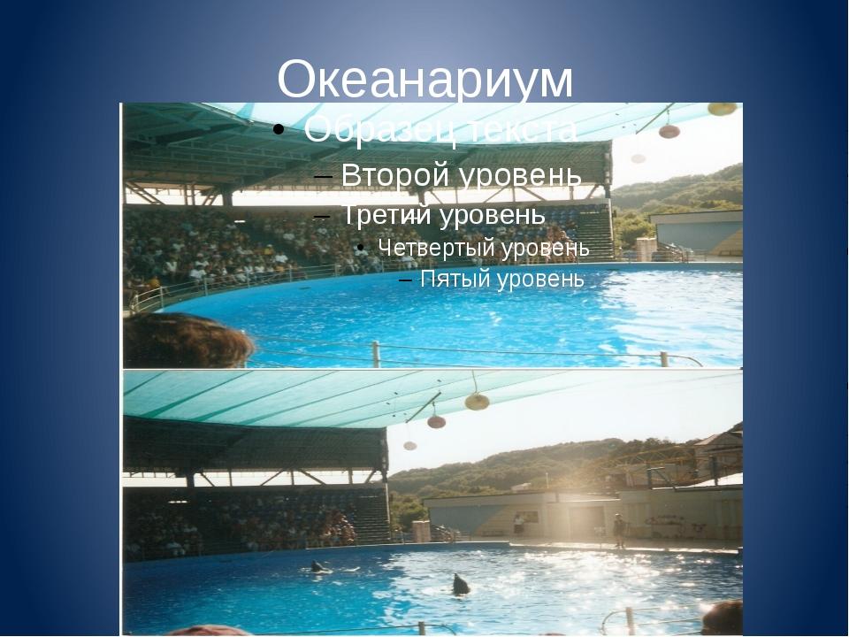 Океанариум Здесь также есть аквапарк, парк аттракционов, уникальный дельфинар...