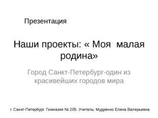 Наши проекты: « Моя малая родина» Город Санкт-Петербург-один из красивейших г