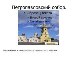Петропавловский собор. Внутри крепости маленький город: здания, собор, площад
