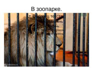 В зоопарке. Настоящие звери живут в зоопарке, а бронзовые и каменные стоят у
