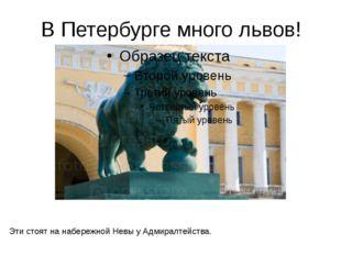 В Петербурге много львов! Эти стоят на набережной Невы у Адмиралтейства. На н
