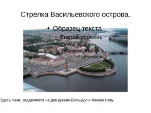 Стрелка Васильевского острова. Здесь Нева разделяется на два рукава-Большую и