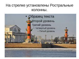 На стрелке установлены Ростральные колонны. По сторонам площади поставлены Ро