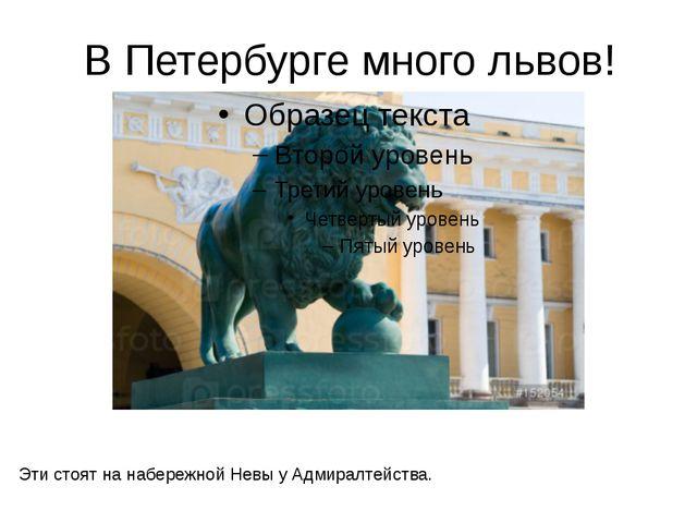 В Петербурге много львов! Эти стоят на набережной Невы у Адмиралтейства. На н...