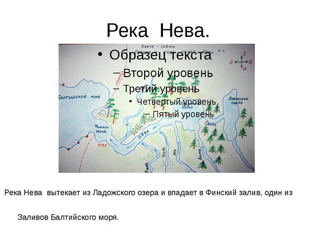 Река Нева. Река Нева вытекает из Ладожского озера и впадает в Финский залив,...