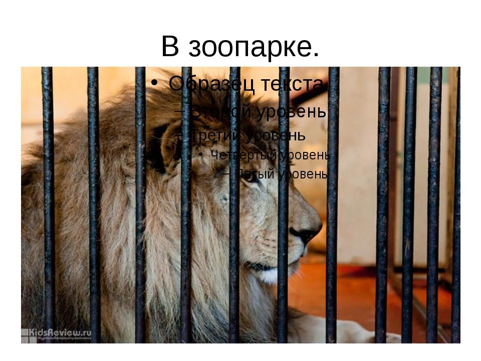 В зоопарке. Настоящие звери живут в зоопарке, а бронзовые и каменные стоят у...
