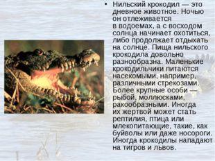 Нильский крокодил— это дневное животное. Ночью онотлеживается вводоемах, а