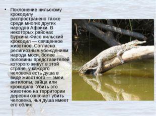 Поклонение нильскому крокодилу распространено также среди многих других народ