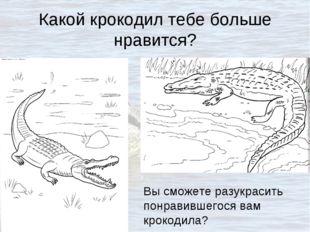 Какой крокодил тебе больше нравится? Вы сможете разукрасить понравившегося ва