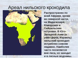 Ареал нильского крокодила Распространен по всей Африке, кроме ее северной час