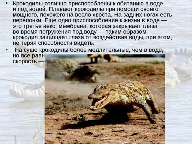 Крокодилы отлично приспособлены кобитанию вводе ипод водой. Плавают крокод...