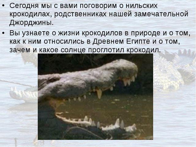 Сегодня мы с вами поговорим о нильских крокодилах, родственниках нашей замеча...