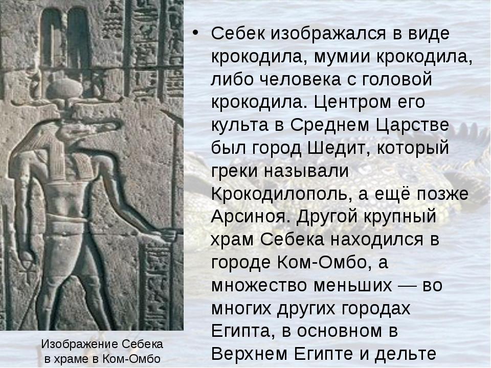 Себек изображался в виде крокодила, мумии крокодила, либо человека с головой...