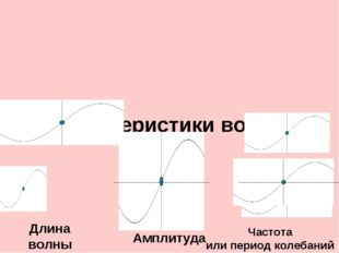Характеристики волны Длина волны Частота или период колебаний Амплитуда