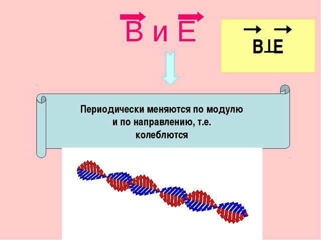 В и Е Периодически меняются по модулю и по направлению, т.е. колеблются В Е