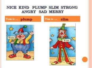 NICE KIND PLUMP SLIM STRONG ANGRY SAD MERRY Tom is … Tim is …. plump slim