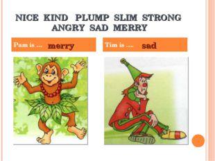 NICE KIND PLUMP SLIM STRONG ANGRY SAD MERRY Pam is … Tim is …. merry sad