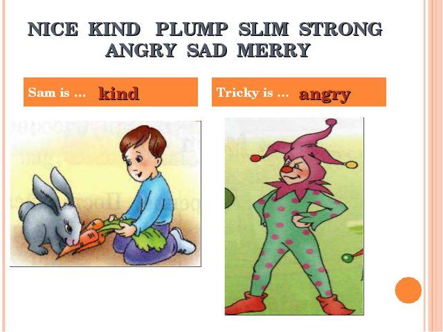 NICE KIND PLUMP SLIM STRONG ANGRY SAD MERRY Sam is … Tricky is … kind angry
