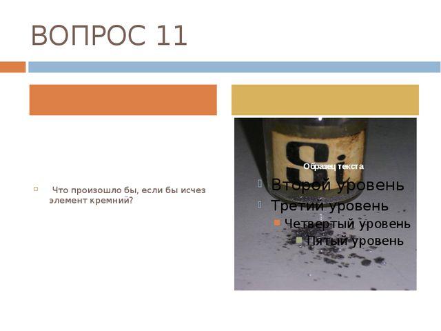 ВОПРОС 11 Что произошло бы, если бы исчез элемент кремний?