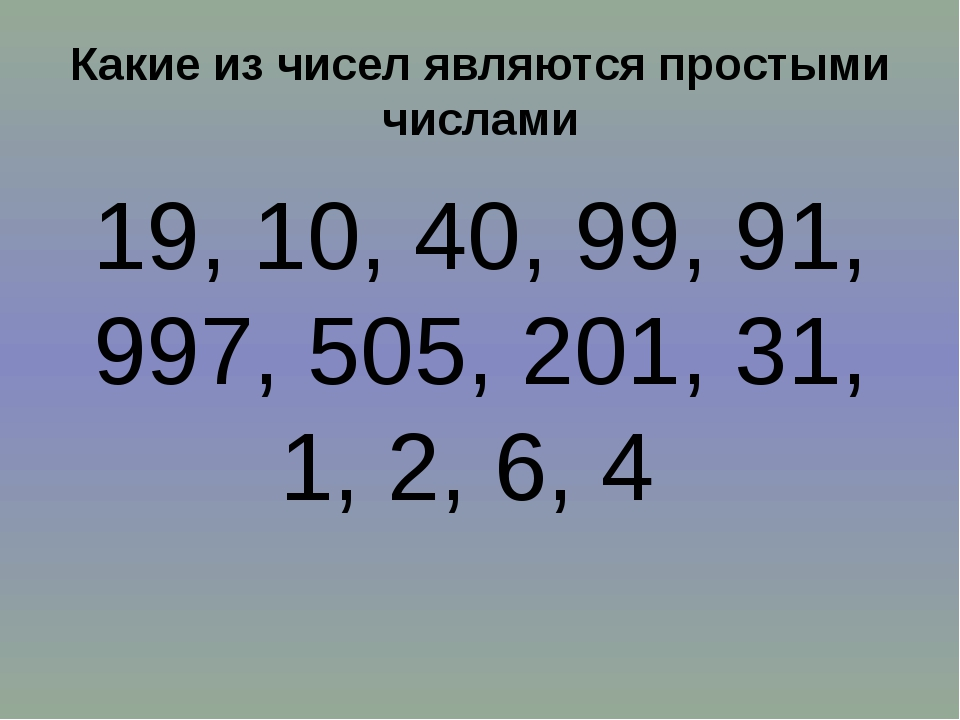 Какие из чисел являются простыми числами 19, 10, 40, 99, 91, 997, 505, 201, 3...