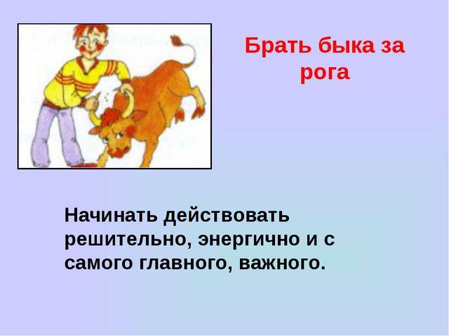 Брать быка за рога Начинать действовать решительно, энергично и с самого глав...