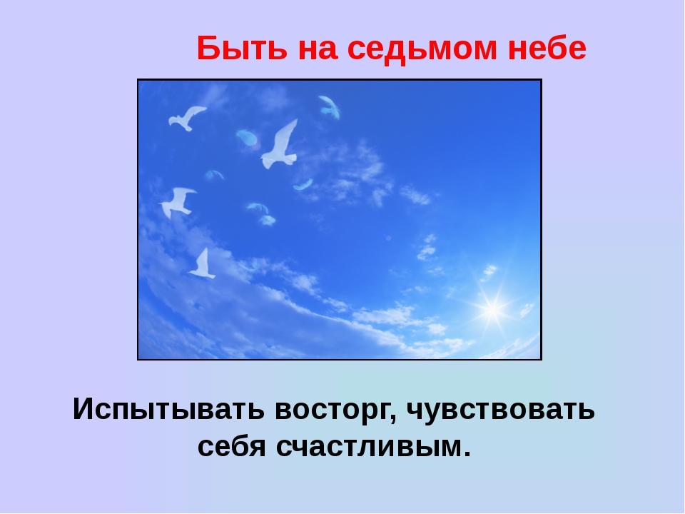 Быть на седьмом небе Испытывать восторг, чувствовать себя счастливым.