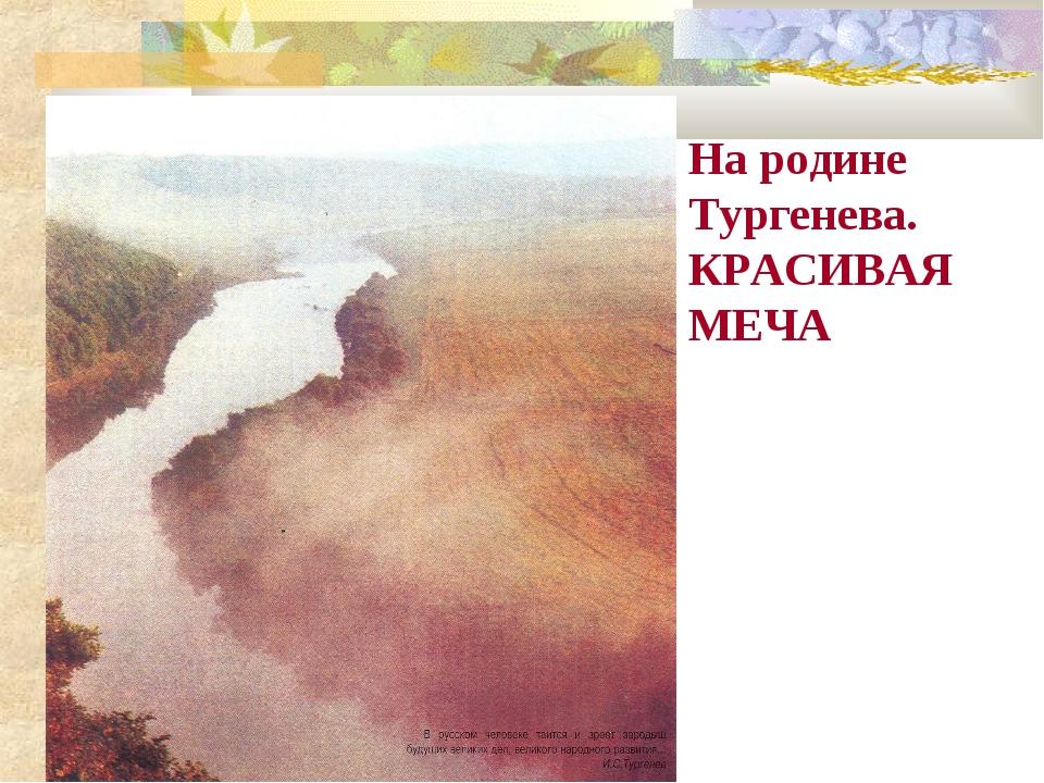 На родине Тургенева. КРАСИВАЯ МЕЧА