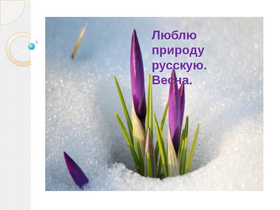 Люблю природу русскую. Весна.