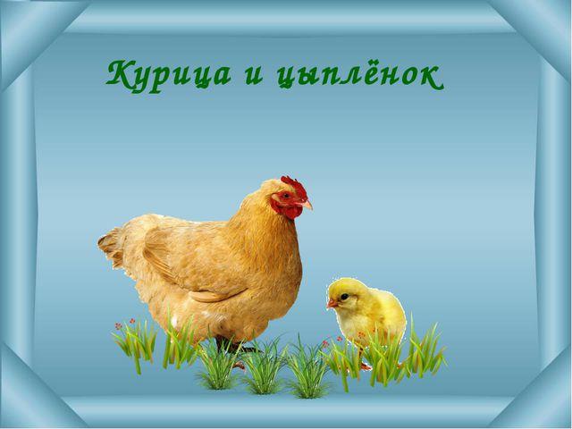 Домик зайца между домиком лисы и ёжика. Кто живёт дальше - ёж или заяц?