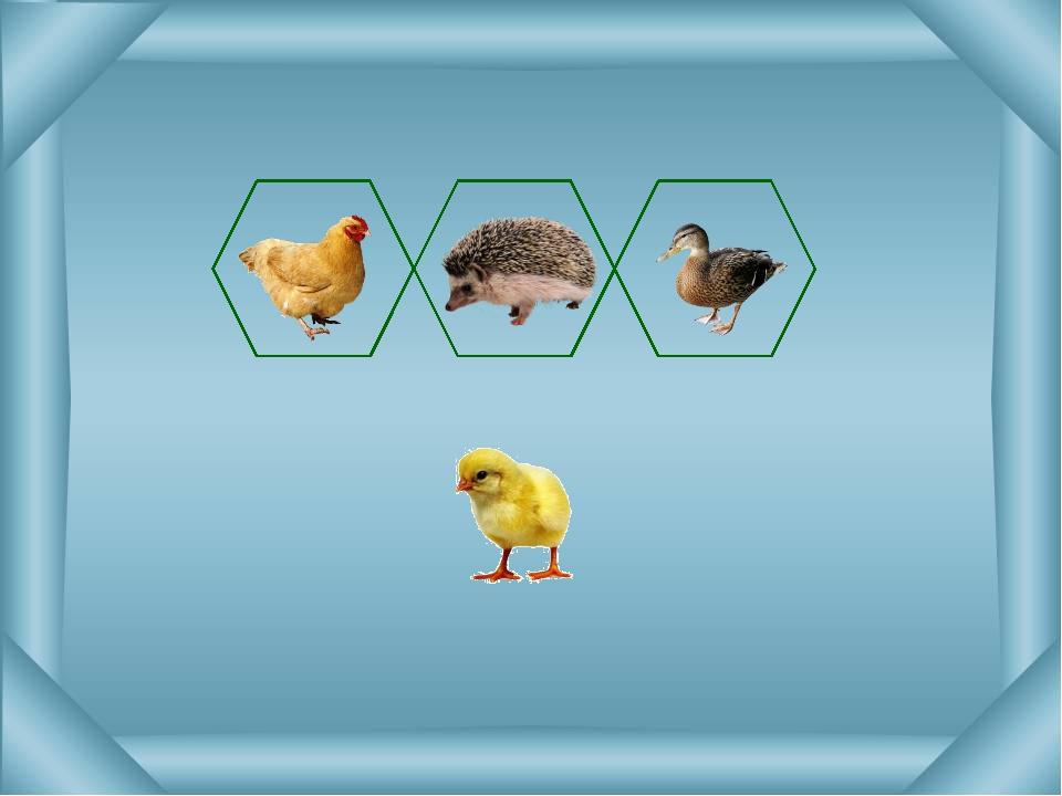 Определи верный ответ. Захвати картинку левой кнопкой мыши и перетащи её в ну...