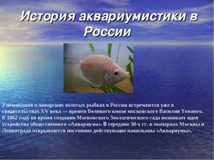 История аквариумистики в России Упоминания о заморских золотых рыбках в Росс