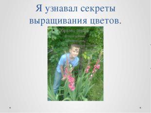 Я узнавал секреты выращивания цветов.