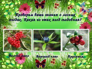 Проверим ваши знания о лесных ягодах. Какая из этих ягод съедобная? Брусника