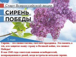 Сирень – это символ весны, светлого праздника. Это память о тех, кто защитил