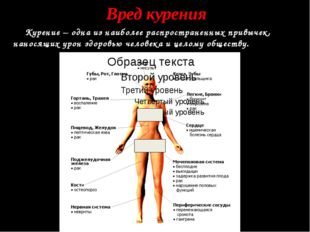 Вред курения Курение – одна из наиболее распространенных привычек, наносящих