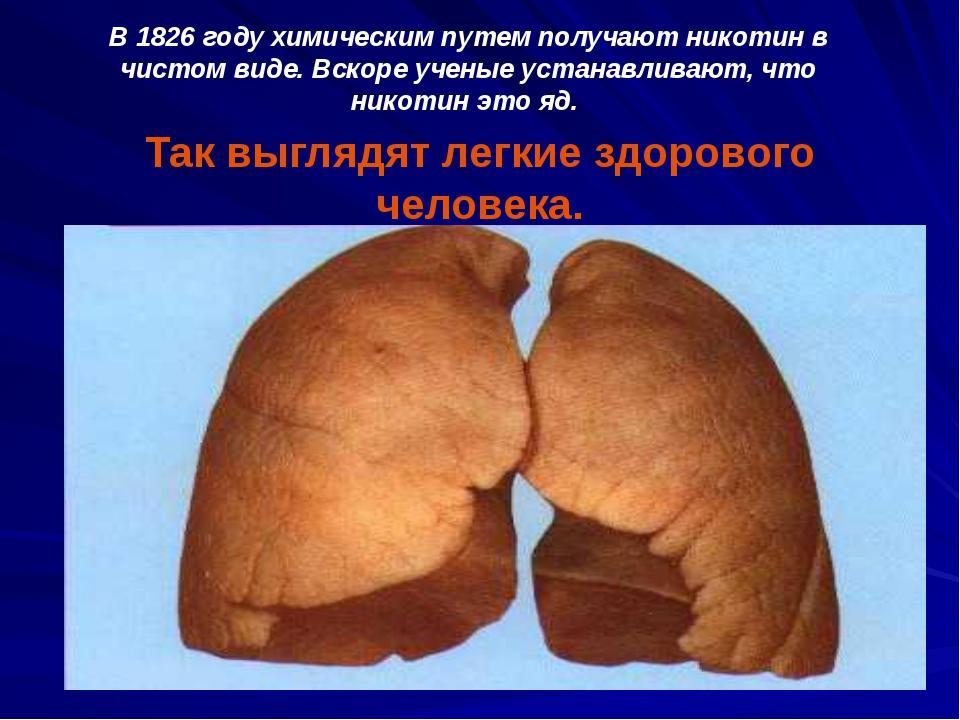 Так выглядят легкие здорового человека. В 1826 году химическим путем получают...