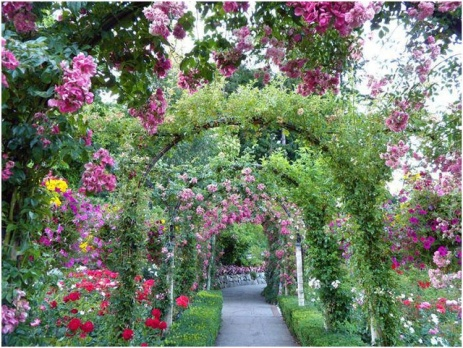 Ботанический сад в Донецке