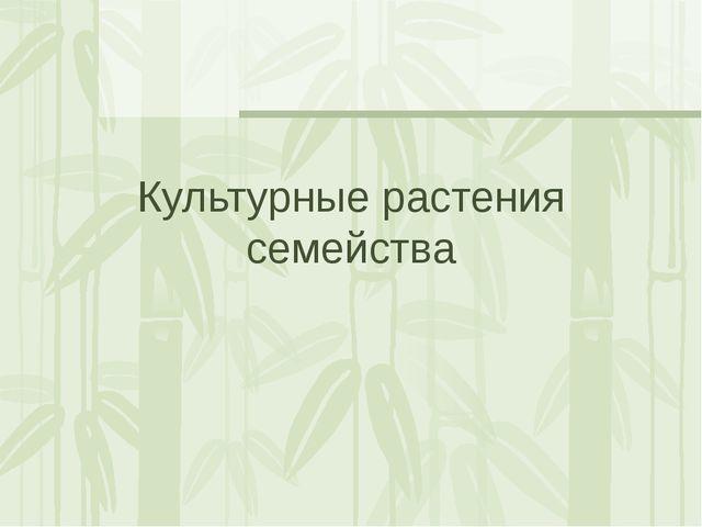 Культурные растения семейства