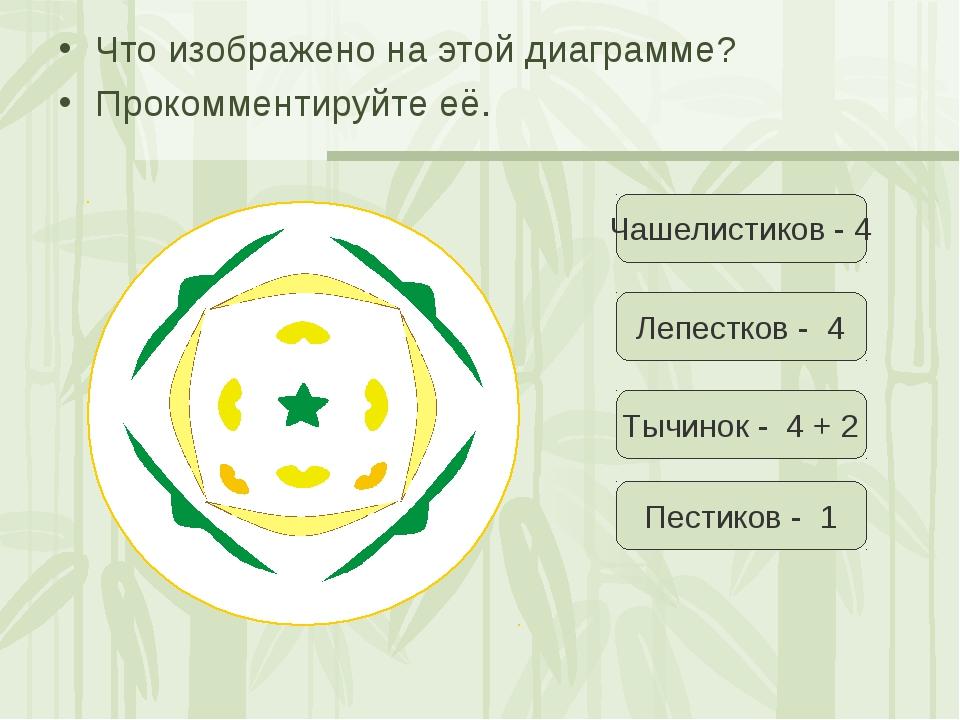 Что изображено на этой диаграмме? Прокомментируйте её. Чашелистиков - 4 Лепес...