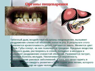 Табачный дым, воздействуя на органы пищеварения, вызывает раздражение слизист